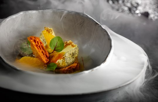Food photograph of a fine dining dessert, orange parfait served in a ceramic bowl with orange supremes, red vein sorrel and orange honeycomb shards, shot on a black shiny background with billowing clouds of smoke