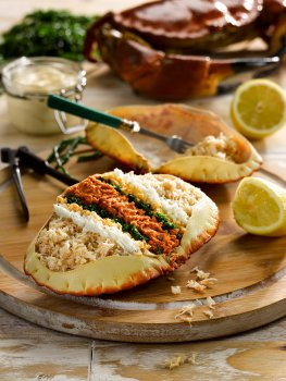 Food photograph close up of a dressed crab, white and brown crab meat dressed with mayonnaise, lemon and parsley, and served in the crab shell on a wooden board with squeezed lemon halves, an empty crab shell and a whole crab in the background with a bunch of parsley