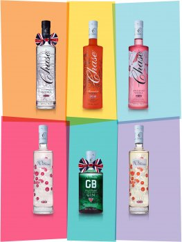 Drinks photograph of six bottles of vodka and gin, each shown isolated on a coloured background with a small shadow and reflection, each bottle is isolated against a different pastel colour